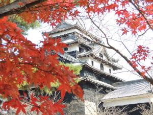 松江城と紅葉
