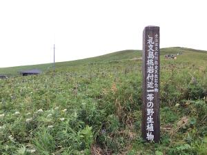 利尻・礼文島の旅170823-6